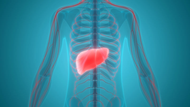 RCN competence framework for health professionals caring for people with liver disease