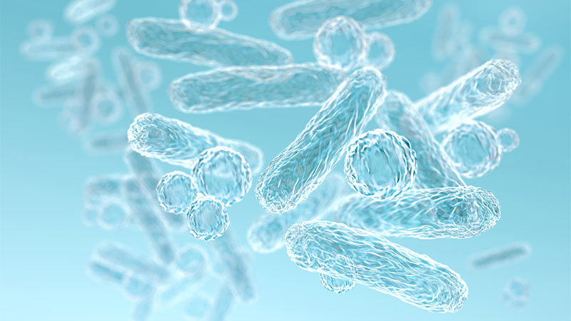 An overview of the oral microbiome