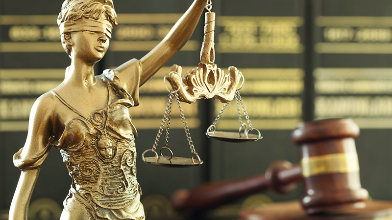 Litigation and the practitioner - interactive