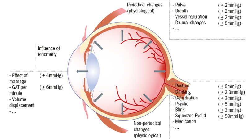 Advanced examination techniques for the anterior eye – part 2