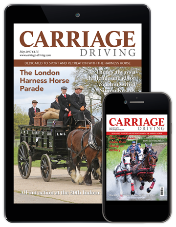 Picture of Carriage Driving Digital
