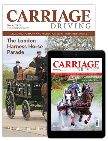 Picture of Carriage Driving Print & Digital
