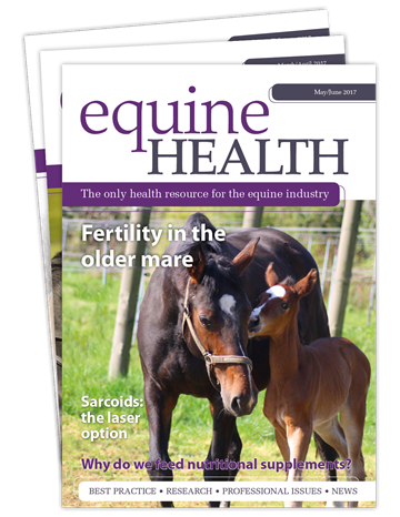 Picture of Equine Health Print