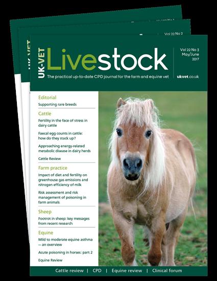 Picture of Livestock Print
