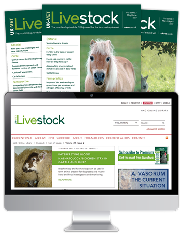 Picture of Livestock Print, Website & CPD