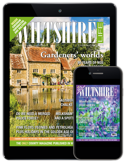 Picture of Wiltshire Life Digital