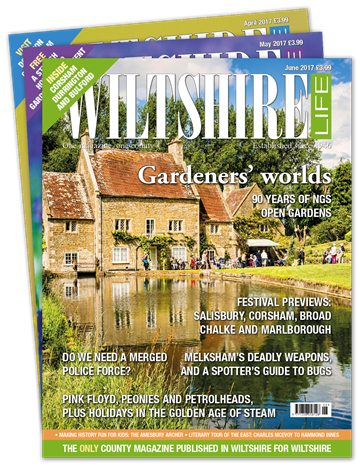 Picture of Wiltshire Life Print