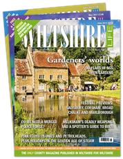 Picture for category Wiltshire life