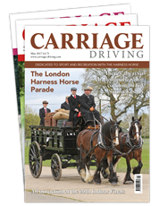 Picture for category Carriage Driving