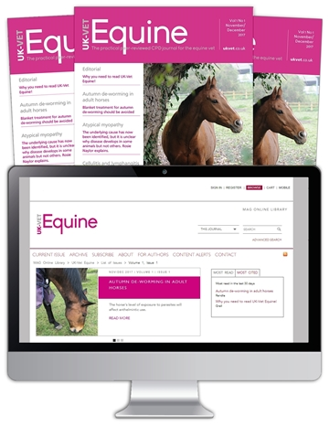 Picture of Equine Print, Website & CPD