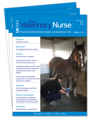 Picture of The Veterinary Nurse Print £3 for 3 issues