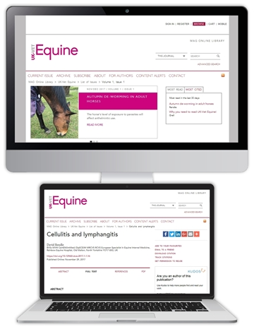 Picture of Equine Website £1 for 1 month
