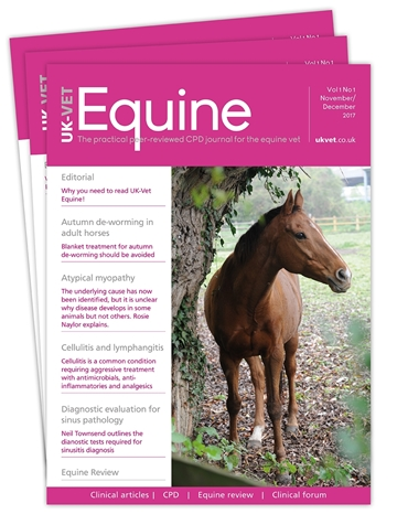 Picture of Equine Print £1 for 1 issue
