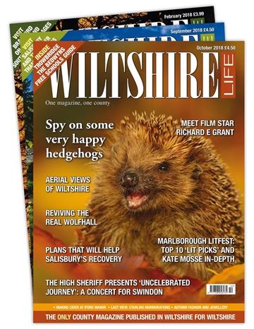 Wiltshire Life Print