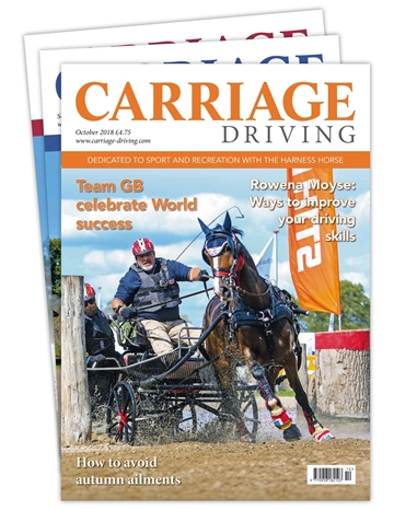 Carriage Driving Print