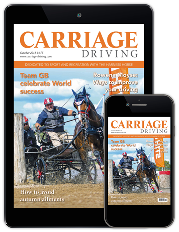 Carriage Driving Digital