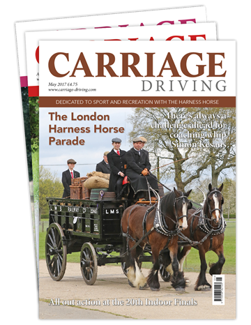 Picture of Carriage Driving Print CDCAP