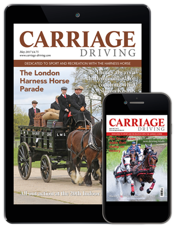 Picture of Carriage Driving Digital CDCAP