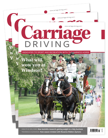 Picture of Carriage Driving Print