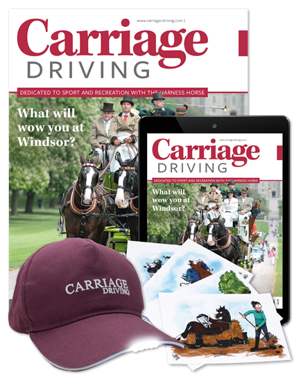 Picture of Carriage Driving Full Club