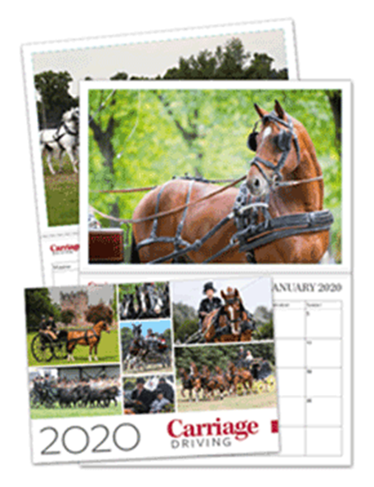 Picture of Carriage Driving Calendar 2020