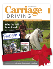 Picture for category Carriage Driving New Year Offer