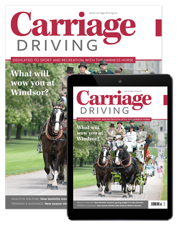 Picture of Carriage Driving Print & free Digital