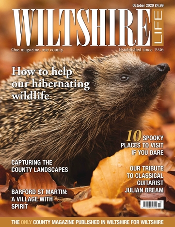 Picture of Wiltshire Life October 2020 issue