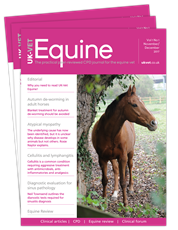 Picture for category UK VET Equine - Black Friday Sale