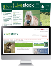 Picture for category Livestock - Black Friday Sale