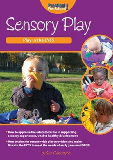 Picture of Sensory Play: Play in The EYFS